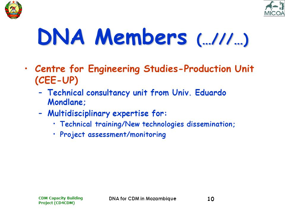 CDM Capacity Building Project (CD4CDM) DNA for CDM in Mozambique 10 DNA Members (…///…) Centre for Engineering Studies-Production Unit (CEE-UP) –Techn