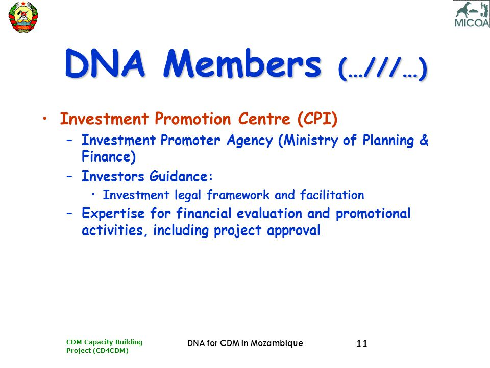 CDM Capacity Building Project (CD4CDM) DNA for CDM in Mozambique 11 DNA Members (…///…) Investment Promotion Centre (CPI) –Investment Promoter Agency