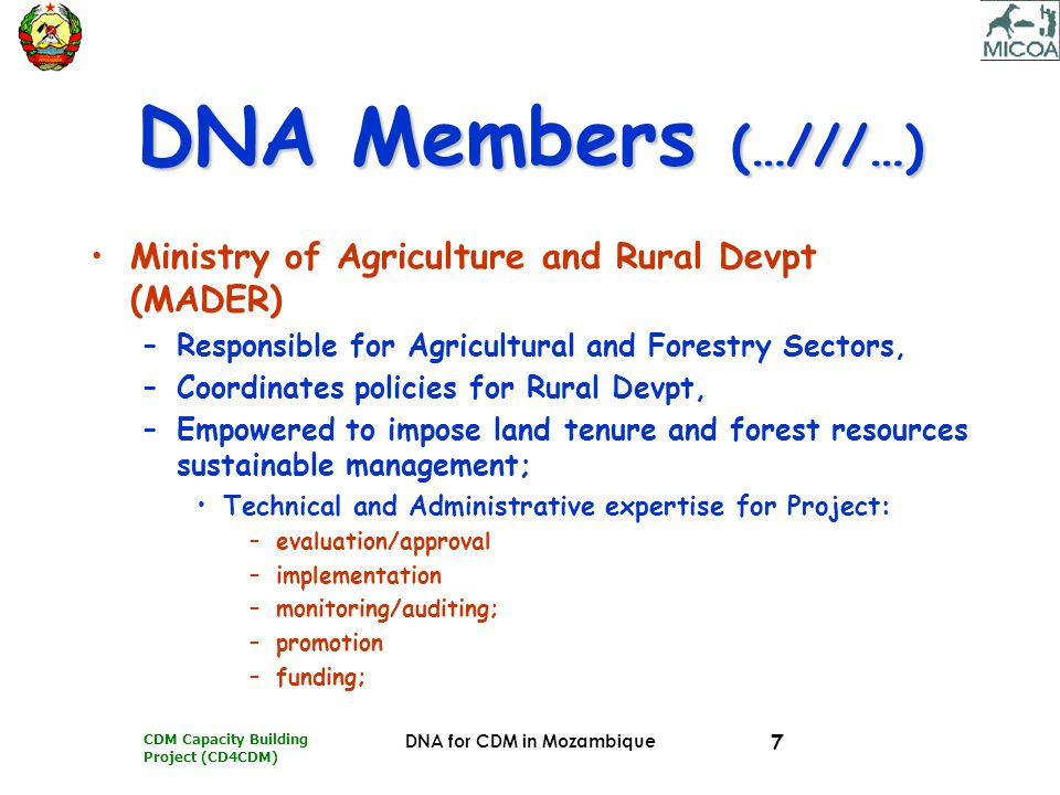 CDM Capacity Building Project (CD4CDM) DNA for CDM in Mozambique 18 MEMBERS' ROLES MADERMADER Represents forestry & agriculture sectors; –Technical assessment; –Legal framework compliance; –Dissemination and Promotional activities
