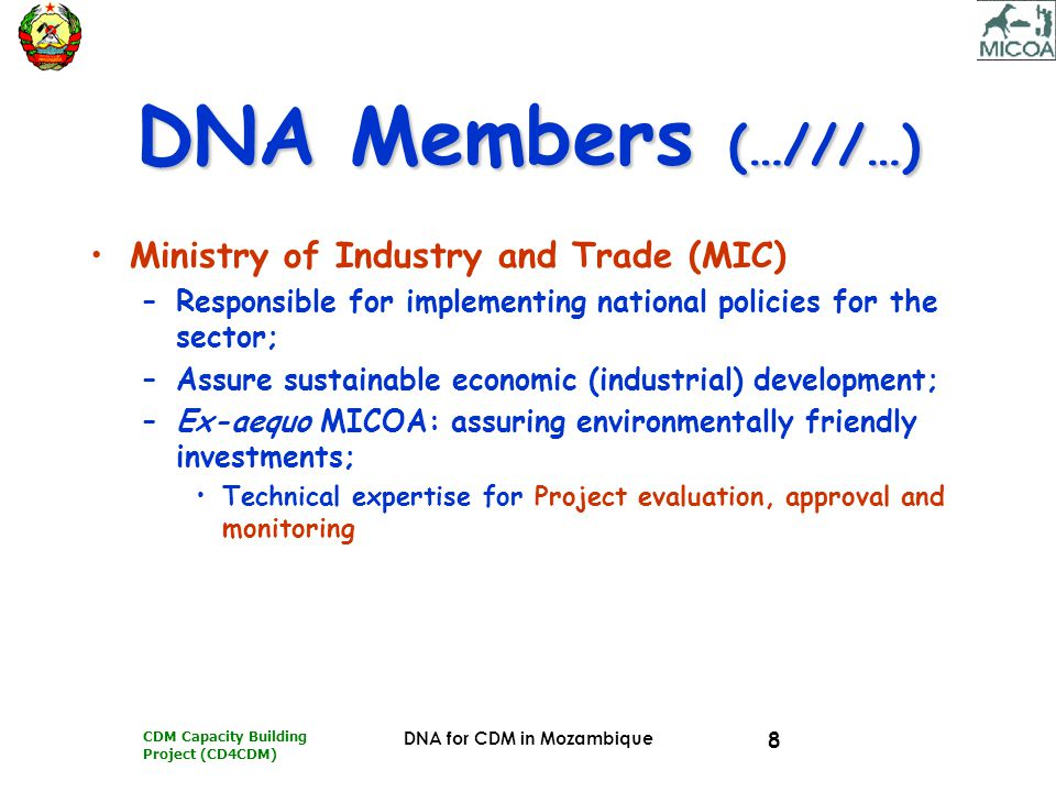 CDM Capacity Building Project (CD4CDM) DNA for CDM in Mozambique 19 MEMBERS' ROLES MICMIC Represents the industrial sector –Adviser for: Project implementation; Legal and formal procedures for Project implementation; Project Evaluation and Monitoring