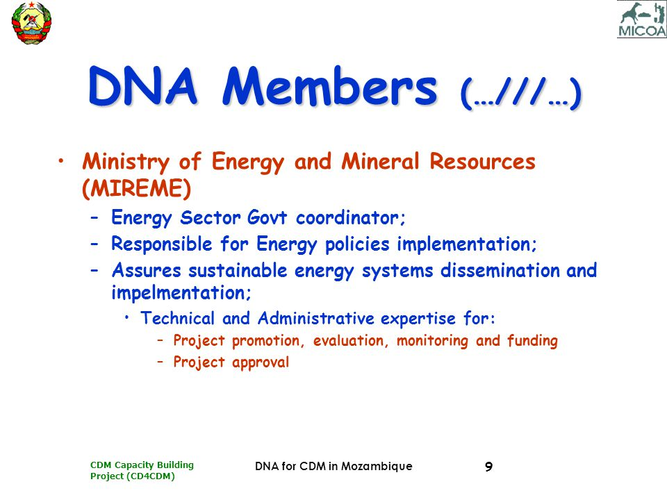 CDM Capacity Building Project (CD4CDM) DNA for CDM in Mozambique 9 DNA Members (…///…) Ministry of Energy and Mineral Resources (MIREME) –Energy Secto