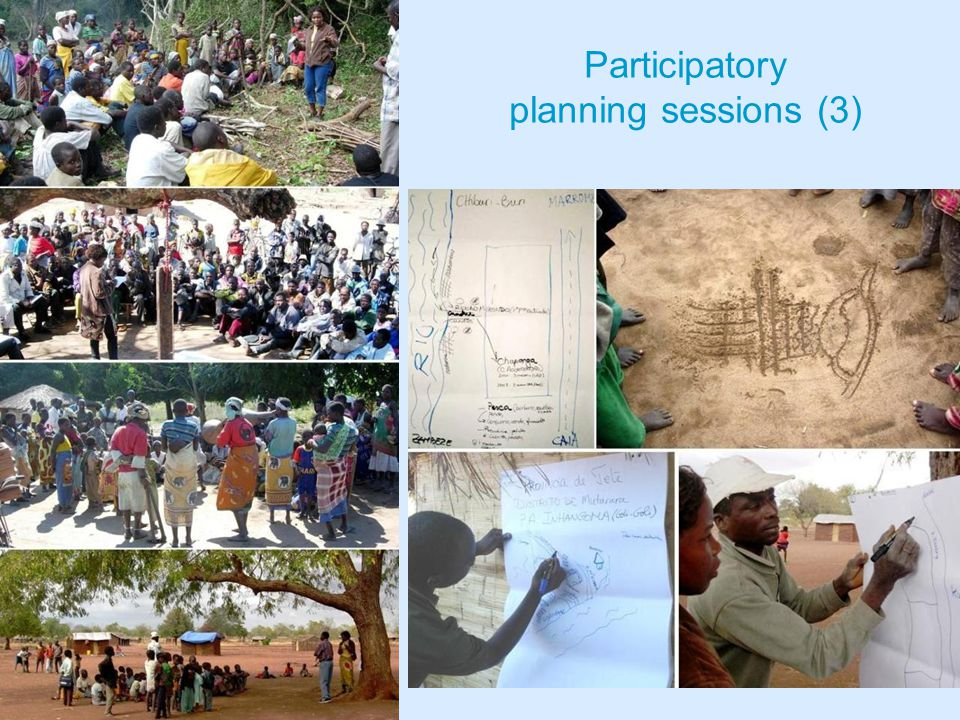 Participatory planning sessions (3)