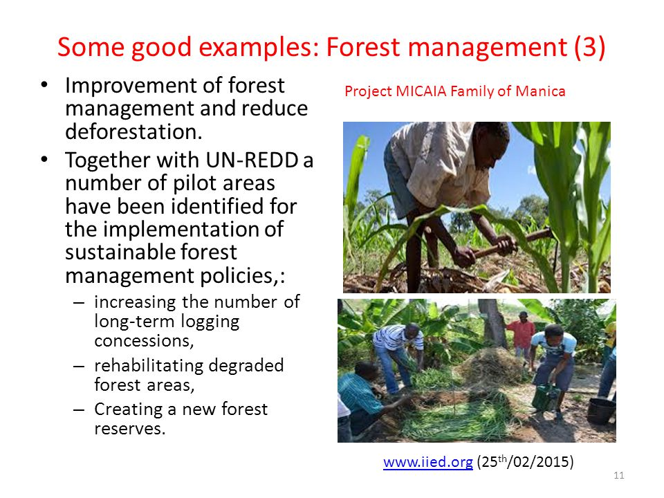 Some good examples: Forest management (3) Improvement of forest management and reduce deforestation. Together with UN-REDD a number of pilot areas hav