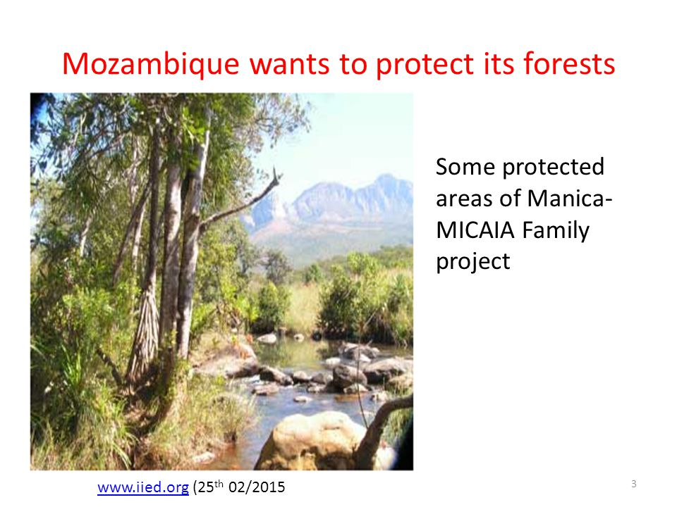 Mozambique wants to protect its forests www.iied.orgwww.iied.org (25 th 02/2015 Some protected areas of Manica- MICAIA Family project 3