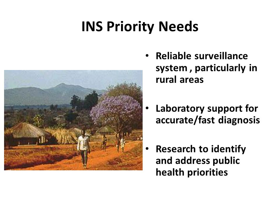 INS Priority Needs Reliable surveillance system, particularly in rural areas Laboratory support for accurate/fast diagnosis Research to identify and address public health priorities