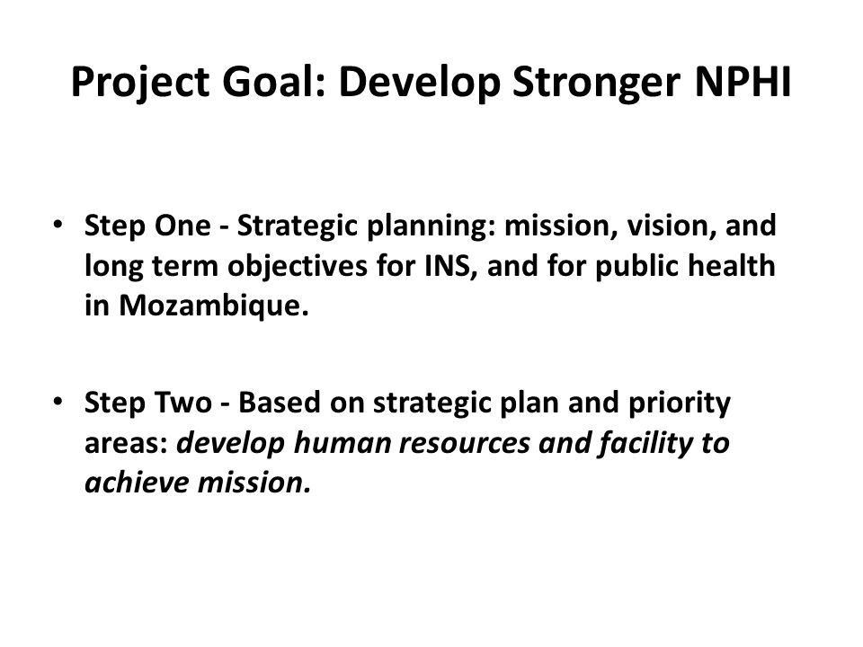 Project Goal: Develop Stronger NPHI Step One - Strategic planning: mission, vision, and long term objectives for INS, and for public health in Mozambi