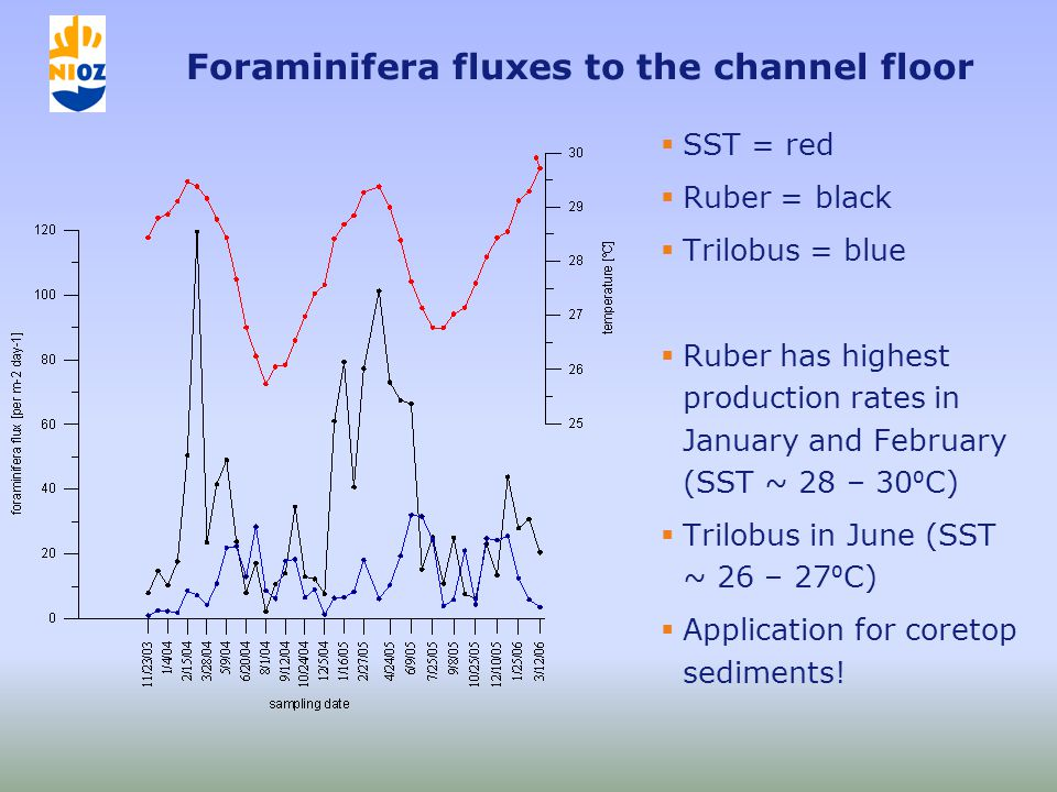 Foraminifera fluxes to the channel floor  SST = red  Ruber = black  Trilobus = blue  Ruber has highest production rates in January and February (SST ~ 28 – 30 ⁰ C)  Trilobus in June (SST ~ 26 – 27 ⁰ C)  Application for coretop sediments!