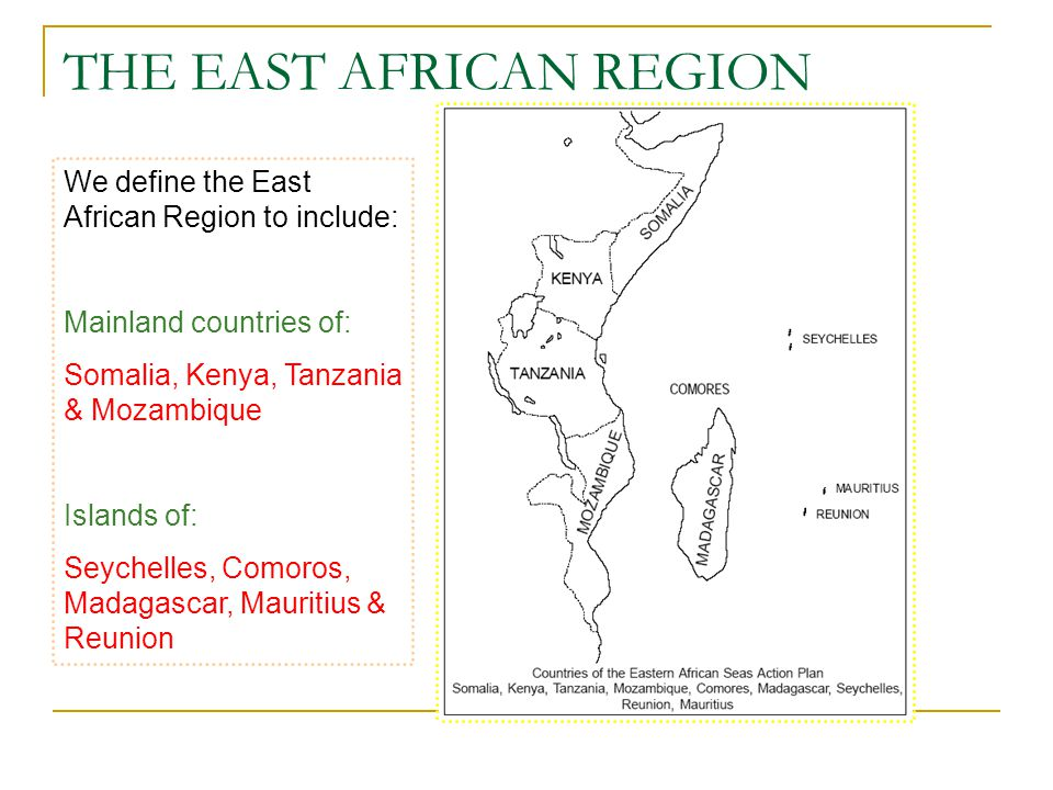 THE EAST AFRICAN REGION We define the East African Region to include: Mainland countries of: Somalia, Kenya, Tanzania & Mozambique Islands of: Seychelles, Comoros, Madagascar, Mauritius & Reunion