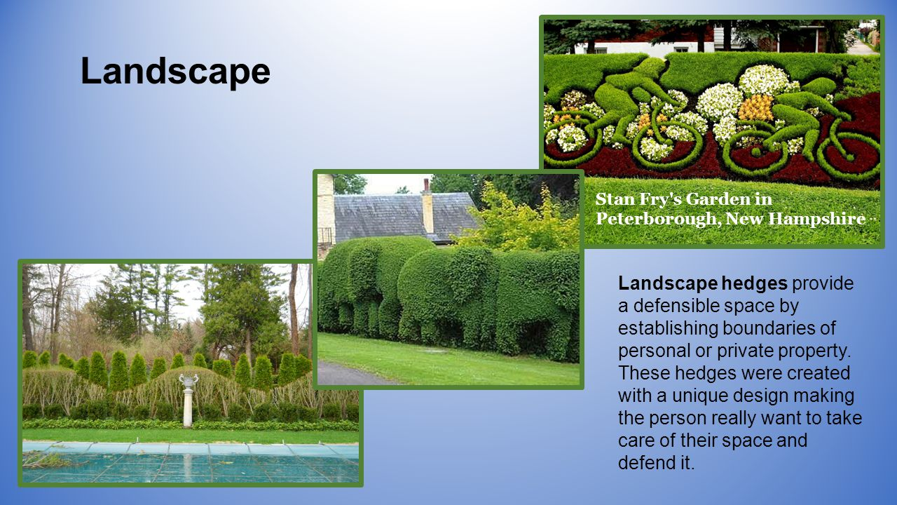 Landscape Stan Fry s Garden in Peterborough, New Hampshire Landscape hedges provide a defensible space by establishing boundaries of personal or private property.