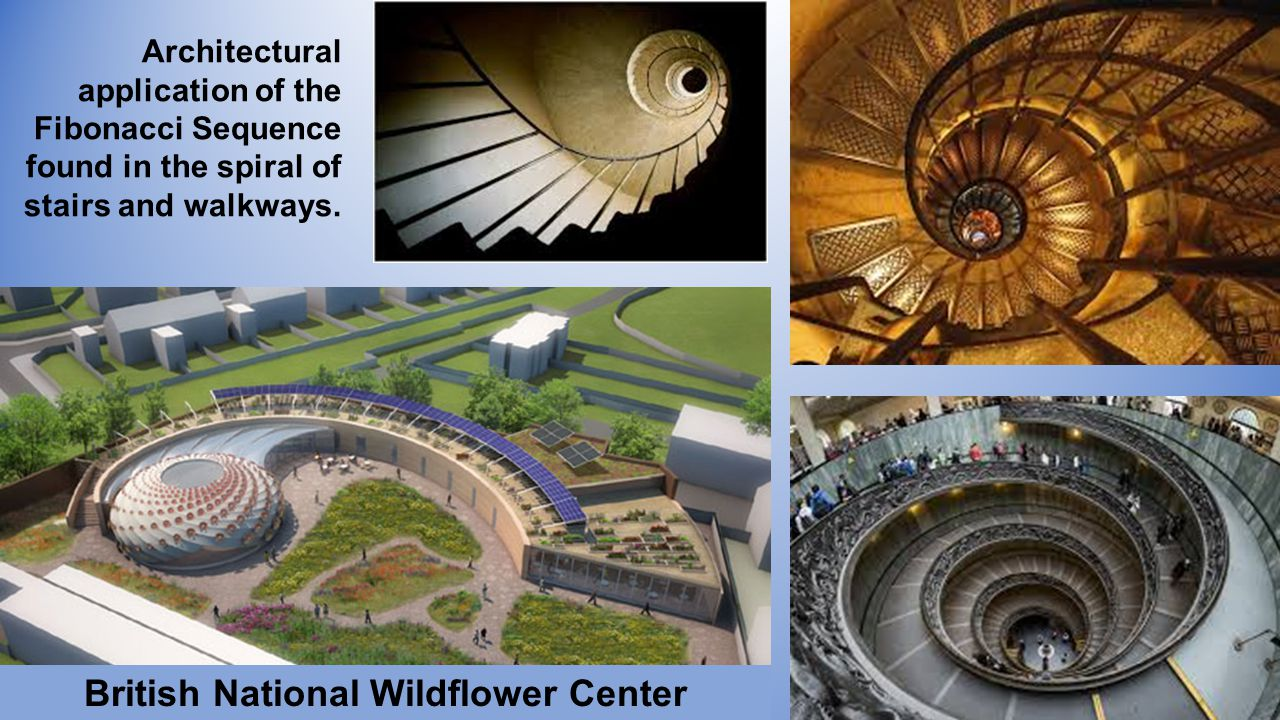 British National Wildflower Center Architectural application of the Fibonacci Sequence found in the spiral of stairs and walkways.