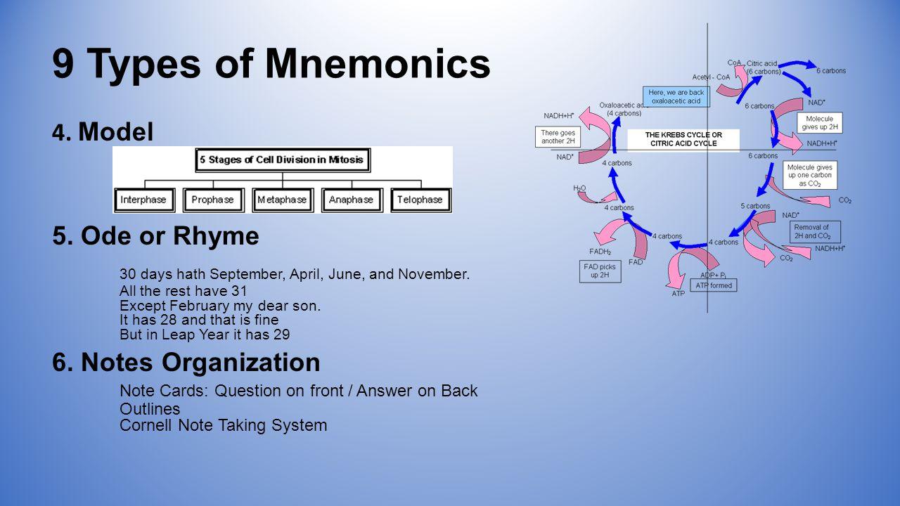 9 Types of Mnemonics 4. Model 5. Ode or Rhyme 30 days hath September, April, June, and November.