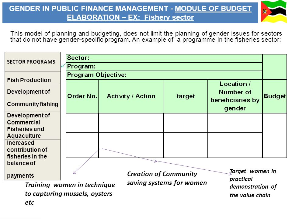 SECTOR PROGRAMS Fish Production Development of Community fishing Development of Commercial Fisheries and Aquaculture Increased contribution of fisheries in the balance of payments Training women in technique to capturing mussels, oysters etc Creation of Community saving systems for women Target women in practical demonstration of the value chain GENDER IN PUBLIC FINANCE MANAGEMENT - MODULE OF BUDGET ELABORATION – EX: Fishery sector This model of planning and budgeting, does not limit the planning of gender issues for sectors that do not have gender-specific program.