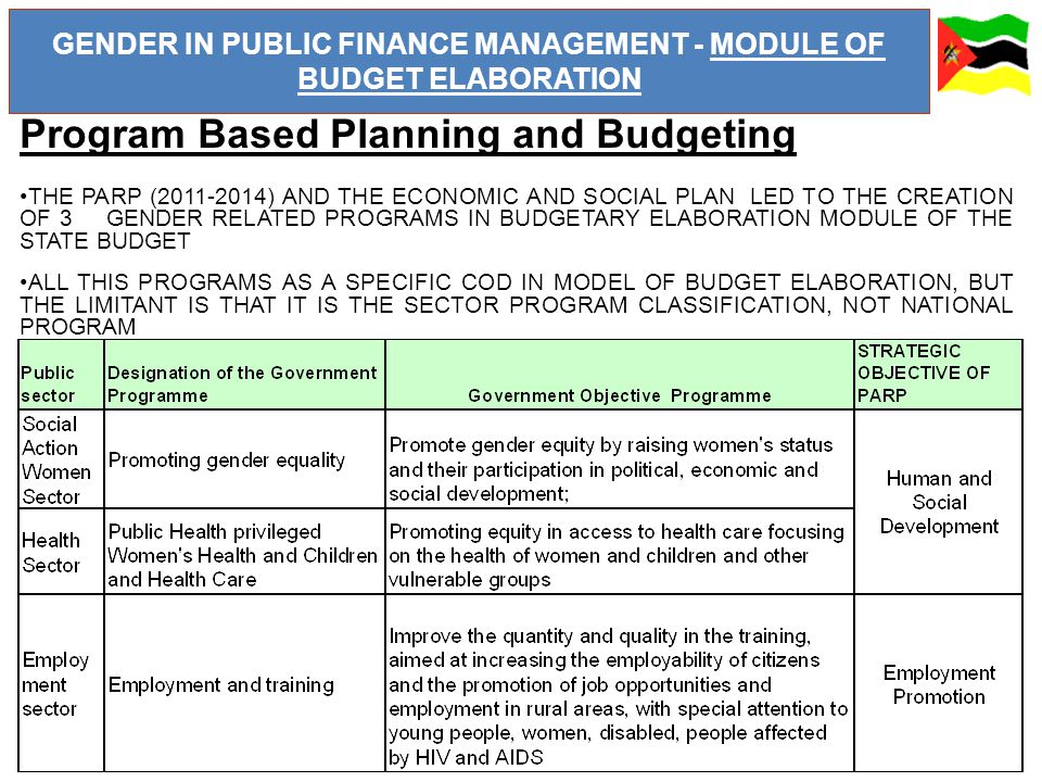 GENDER IN PUBLIC FINANCE MANAGEMENT - MODULE OF BUDGET ELABORATION Program Based Planning and Budgeting THE PARP (2011-2014) AND THE ECONOMIC AND SOCIAL PLAN LED TO THE CREATION OF 3 GENDER RELATED PROGRAMS IN BUDGETARY ELABORATION MODULE OF THE STATE BUDGET ALL THIS PROGRAMS AS A SPECIFIC COD IN MODEL OF BUDGET ELABORATION, BUT THE LIMITANT IS THAT IT IS THE SECTOR PROGRAM CLASSIFICATION, NOT NATIONAL PROGRAM