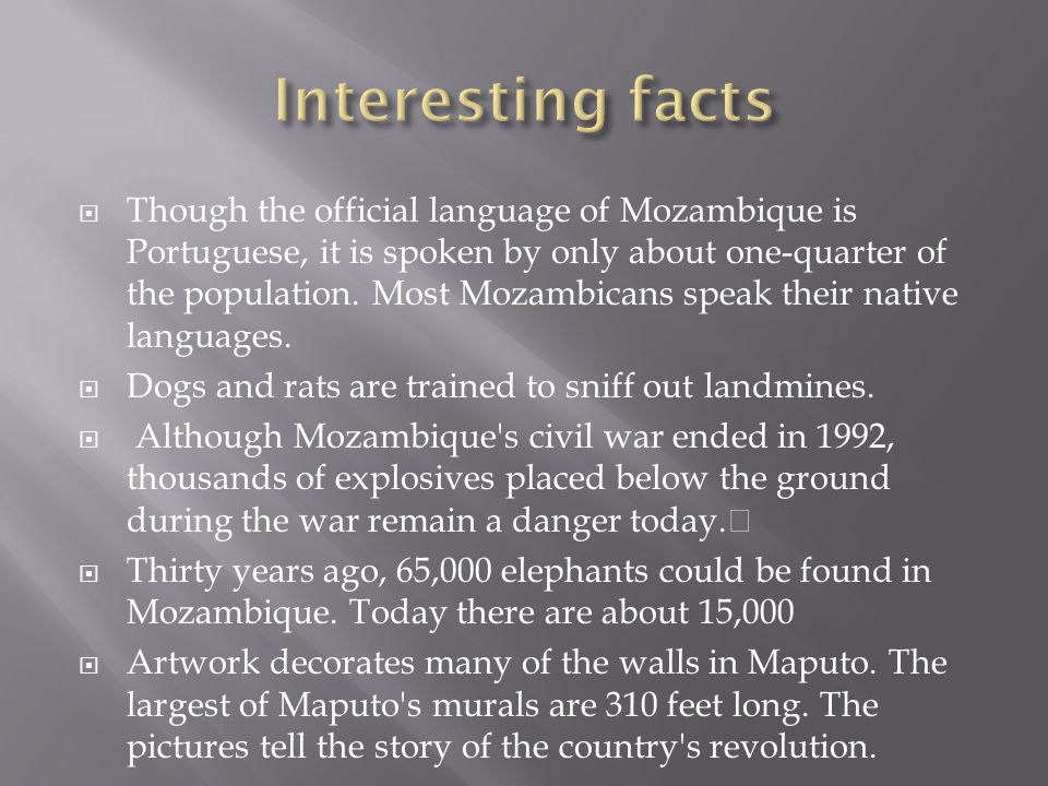  Though the official language of Mozambique is Portuguese, it is spoken by only about one-quarter of the population.