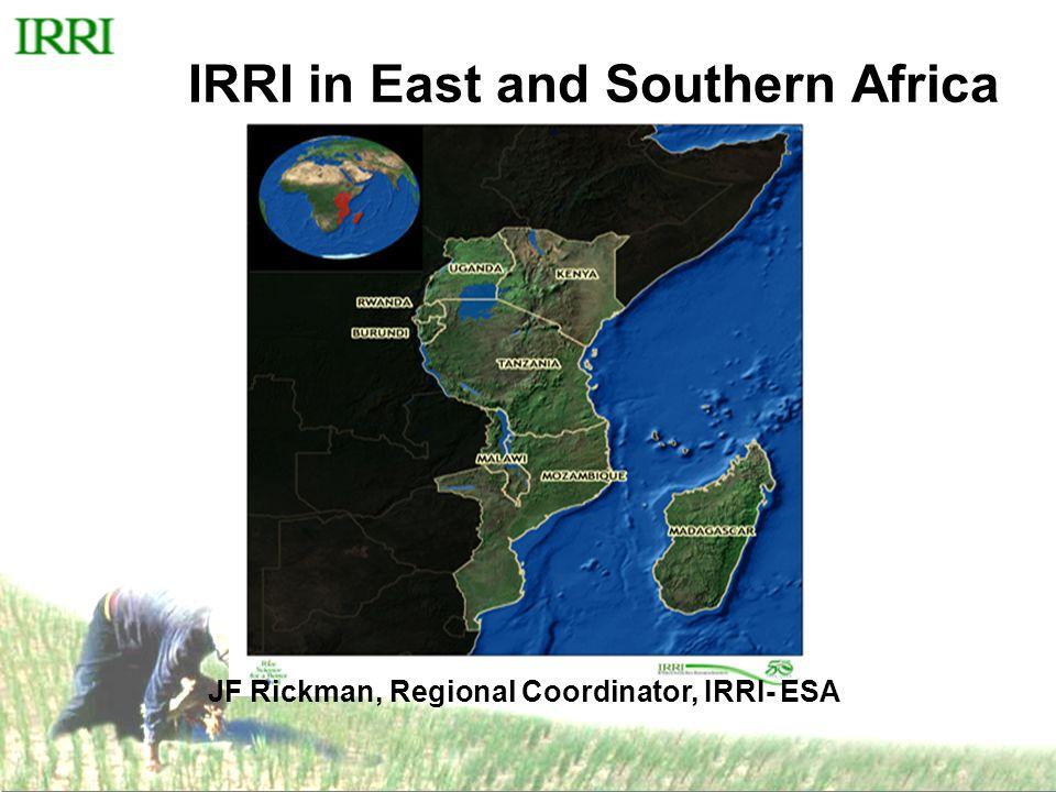 IRRI in the region Started in Mozambique:- September 2006 Now work in 7 countries :- Burundi, Kenya, Rwanda, Mozambique Tanzania, Uganda, Zanzibar Offices in 3 countries:-Mozambique, Tanzania, Burundi Staff :- 30 ( 9 IRS, 5 NRS, 16 TA's) Regional Research Sites (54) –Mozambique 17, –Tanzania 20 –Burundi 9 –Kenya 2, Uganda 3, Malawi 1, Zanzibar 1, Ethiopia1