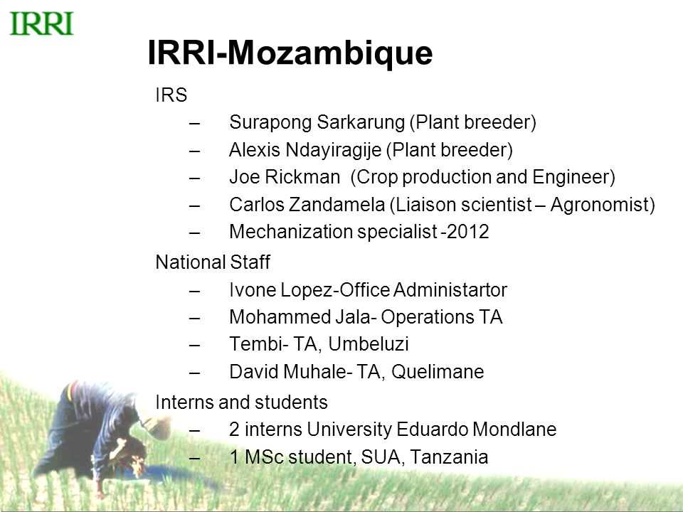 IRRI-Mozambique IRS –Surapong Sarkarung (Plant breeder) –Alexis Ndayiragije (Plant breeder) –Joe Rickman (Crop production and Engineer) –Carlos Zandamela (Liaison scientist – Agronomist) –Mechanization specialist -2012 National Staff –Ivone Lopez-Office Administartor –Mohammed Jala- Operations TA –Tembi- TA, Umbeluzi –David Muhale- TA, Quelimane Interns and students –2 interns University Eduardo Mondlane –1 MSc student, SUA, Tanzania