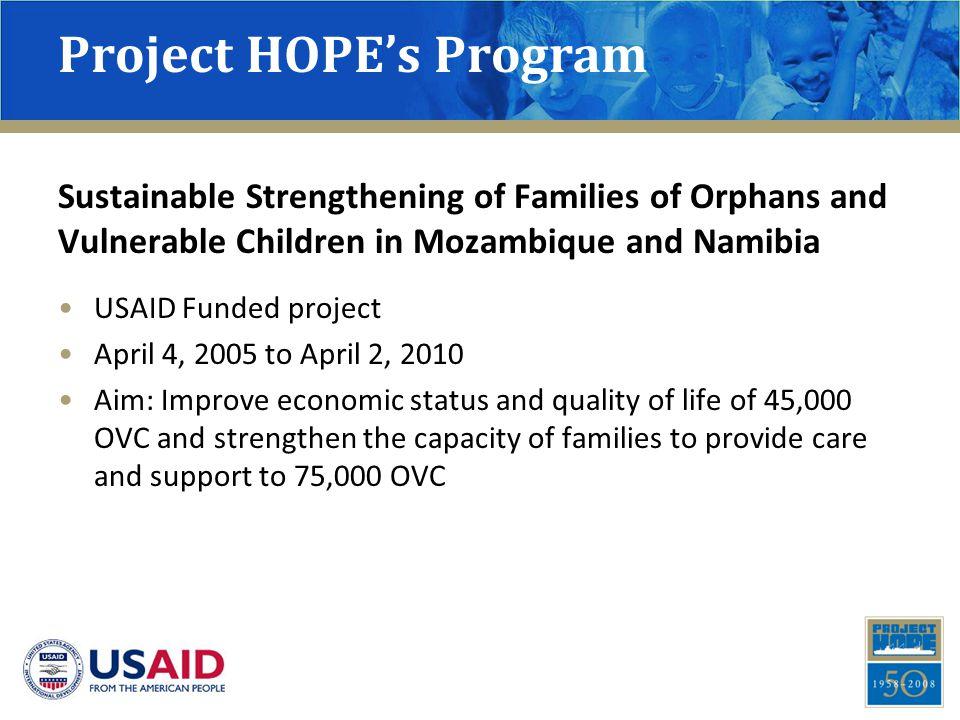 Results: Caregiver Economic Impact – Mozambique