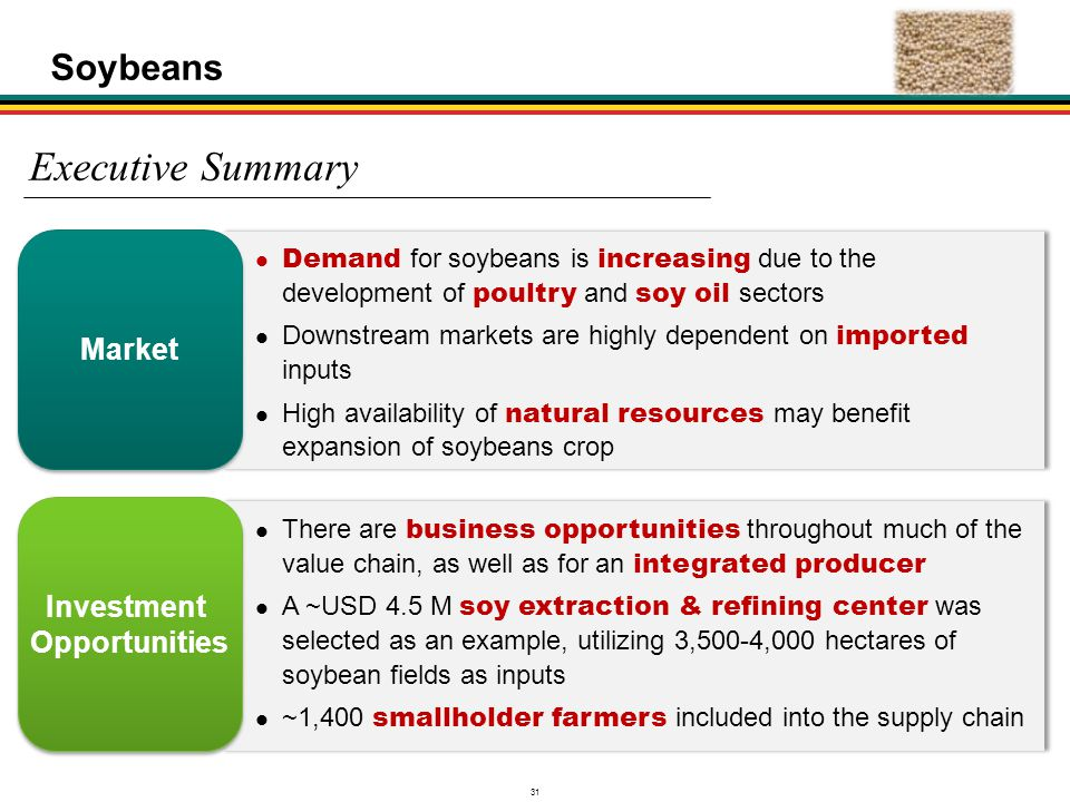 31 There are business opportunities throughout much of the value chain, as well as for an integrated producer A ~USD 4.5 M soy extraction & refining c
