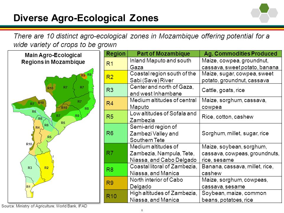 6 Diverse Agro-Ecological Zones There are 10 distinct agro-ecological zones in Mozambique offering potential for a wide variety of crops to be grown M