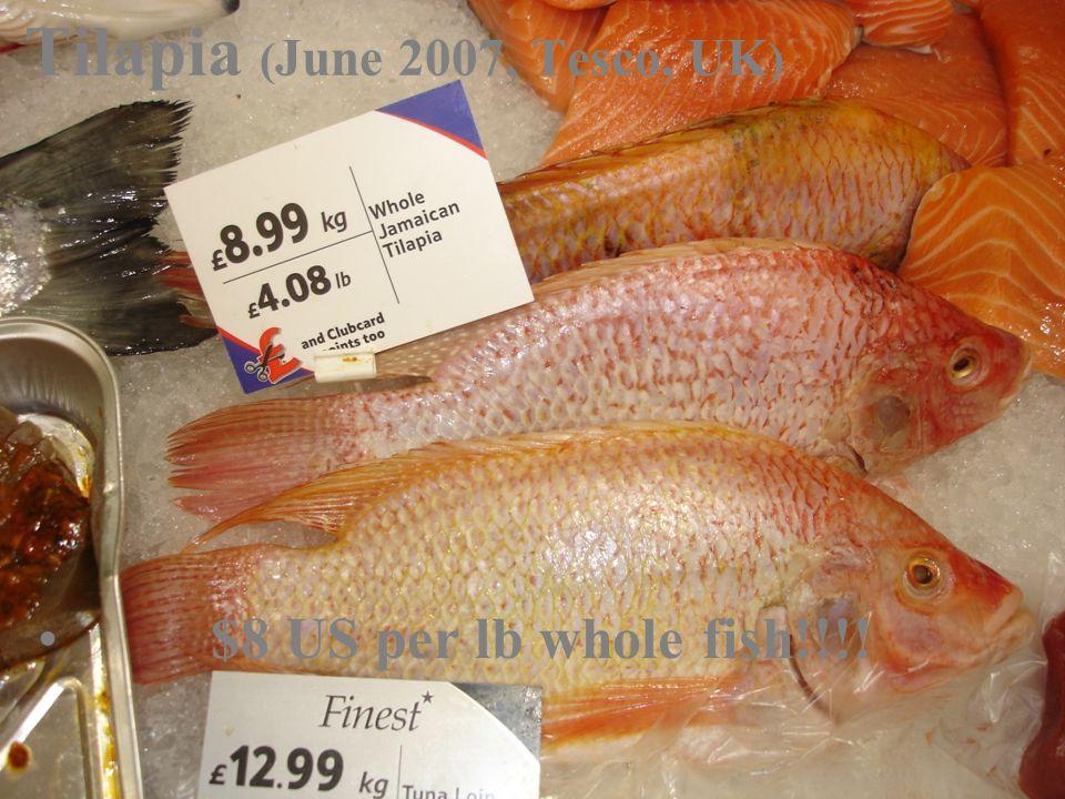 Tilapia ( June 2007, Tesco, UK ) $8 US per lb whole fish!!!!