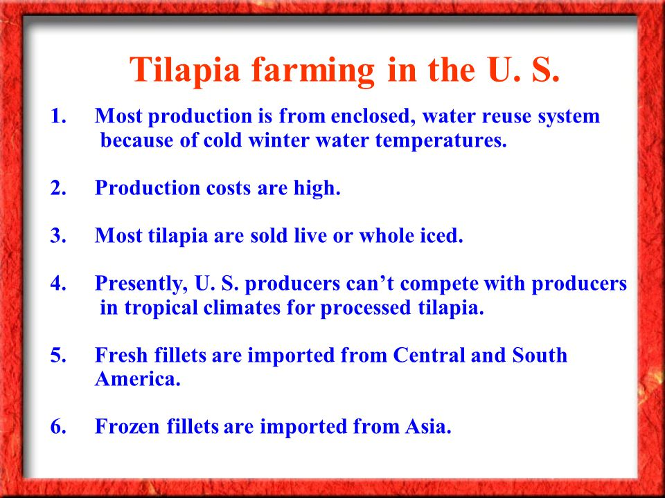 Tilapia farming in the U. S. 1.Most production is from enclosed, water reuse system because of cold winter water temperatures. 2.Production costs are