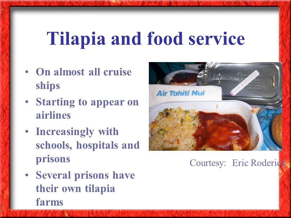 Tilapia and food service On almost all cruise ships Starting to appear on airlines Increasingly with schools, hospitals and prisons Several prisons ha