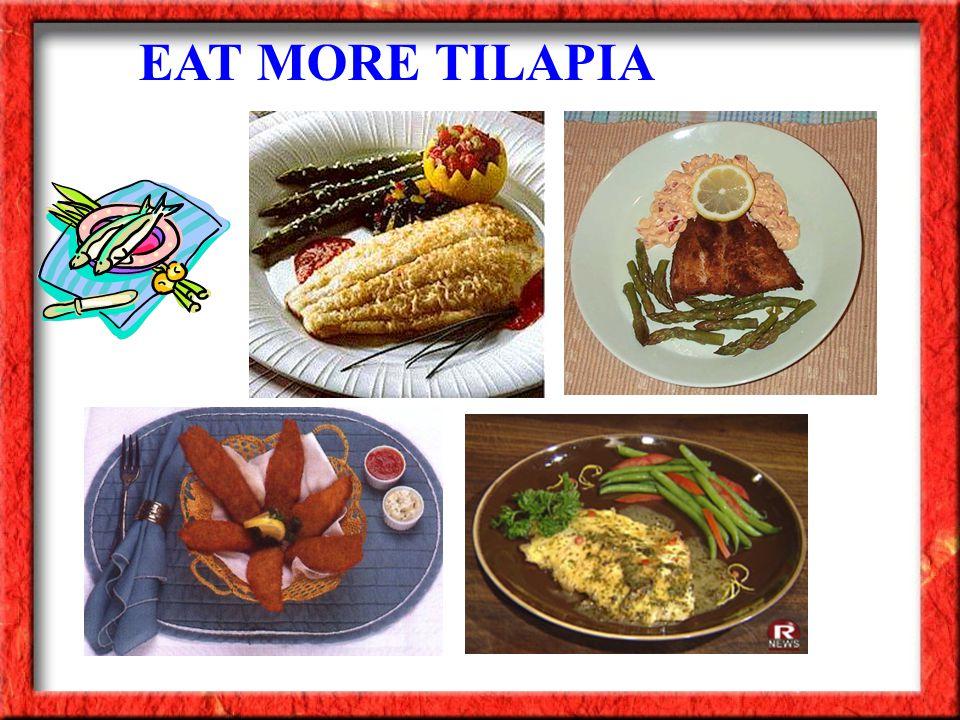EAT MORE TILAPIA