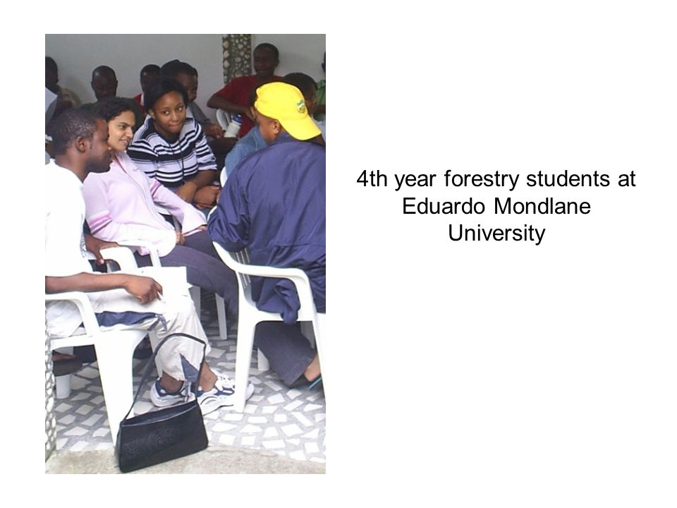 4th year forestry students at Eduardo Mondlane University