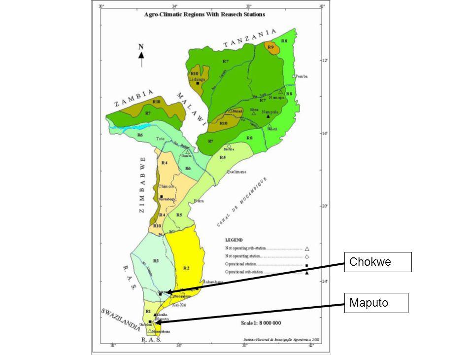 Maputo Chokwe