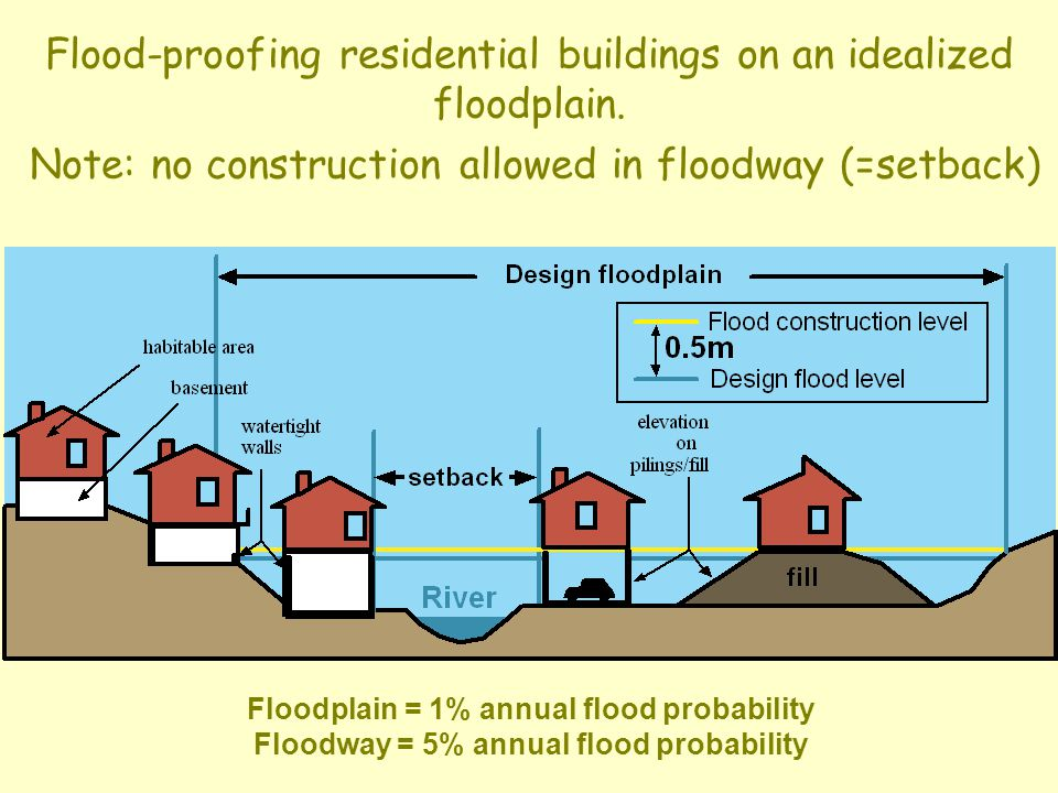 Flood-proofing residential buildings on an idealized floodplain.