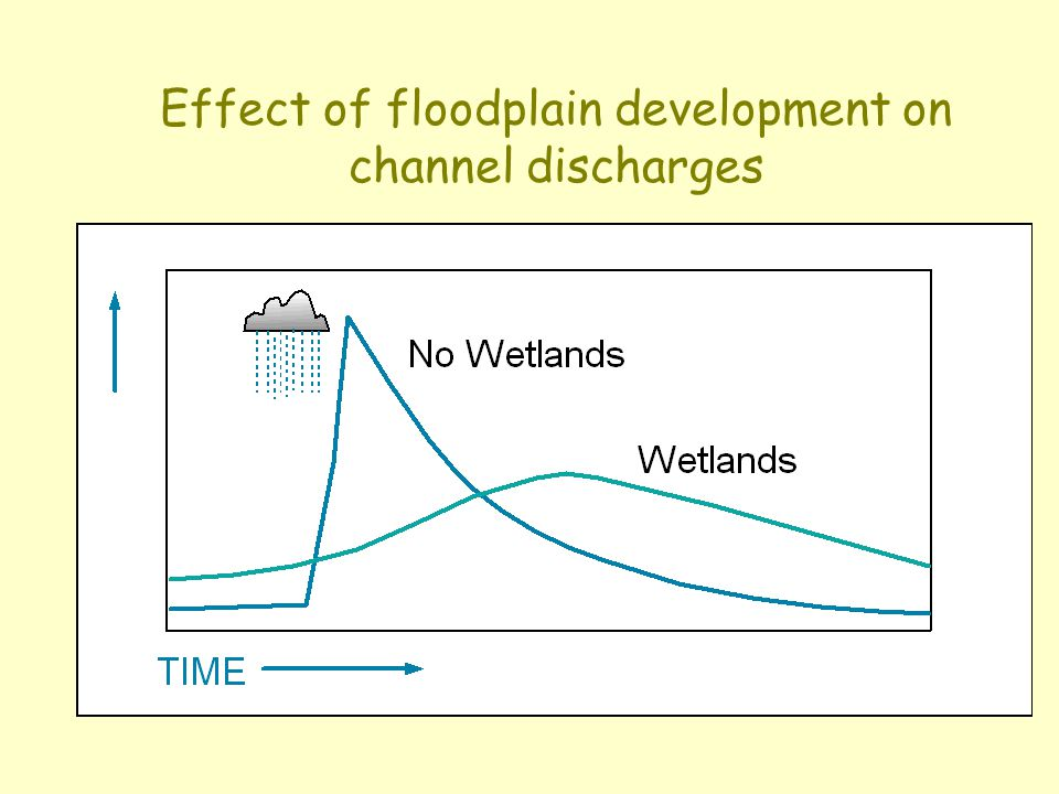 Effect of floodplain development on channel discharges