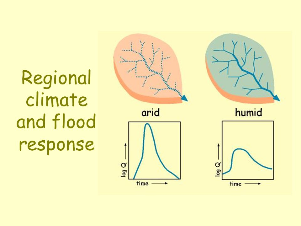 Regional climate and flood response