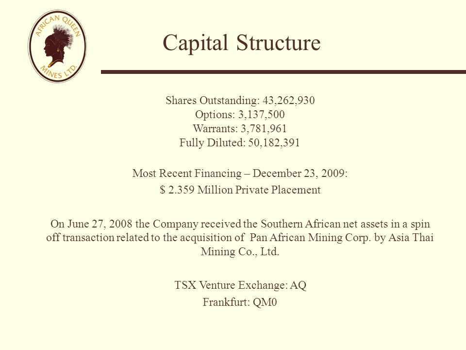 Capital Structure Shares Outstanding: 43,262,930 Options: 3,137,500 Warrants: 3,781,961 Fully Diluted: 50,182,391 Most Recent Financing – December 23, 2009: $ 2.359 Million Private Placement On June 27, 2008 the Company received the Southern African net assets in a spin off transaction related to the acquisition of Pan African Mining Corp.