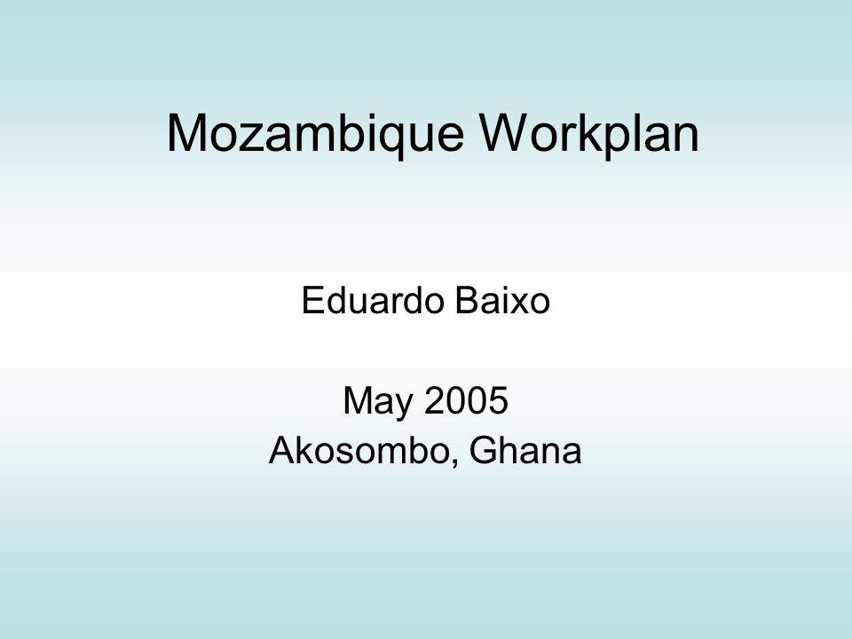 Mozambique Workplan Eduardo Baixo May 2005 Akosombo, Ghana