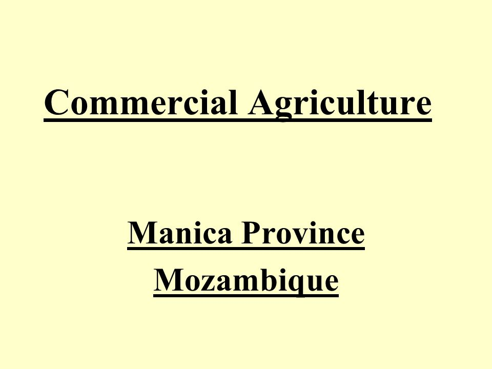 Competitive Can Mozambique be Competitive Regionally and Globally ?