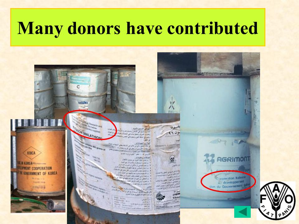 Many donors have contributed