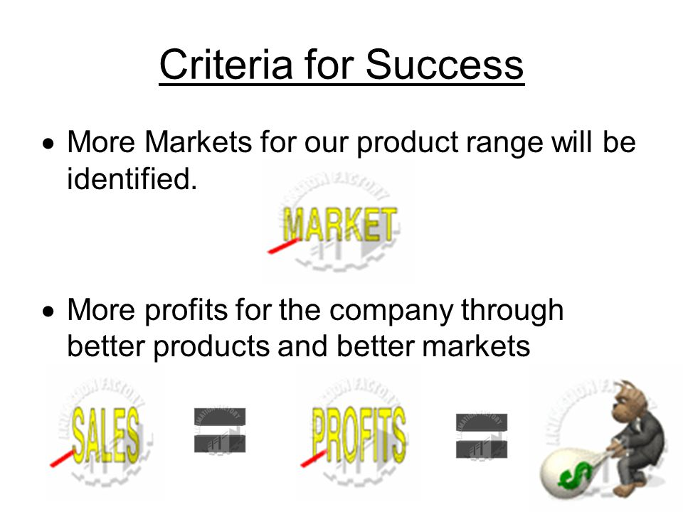 Criteria for Success  More Markets for our product range will be identified.  More profits for the company through better products and better market