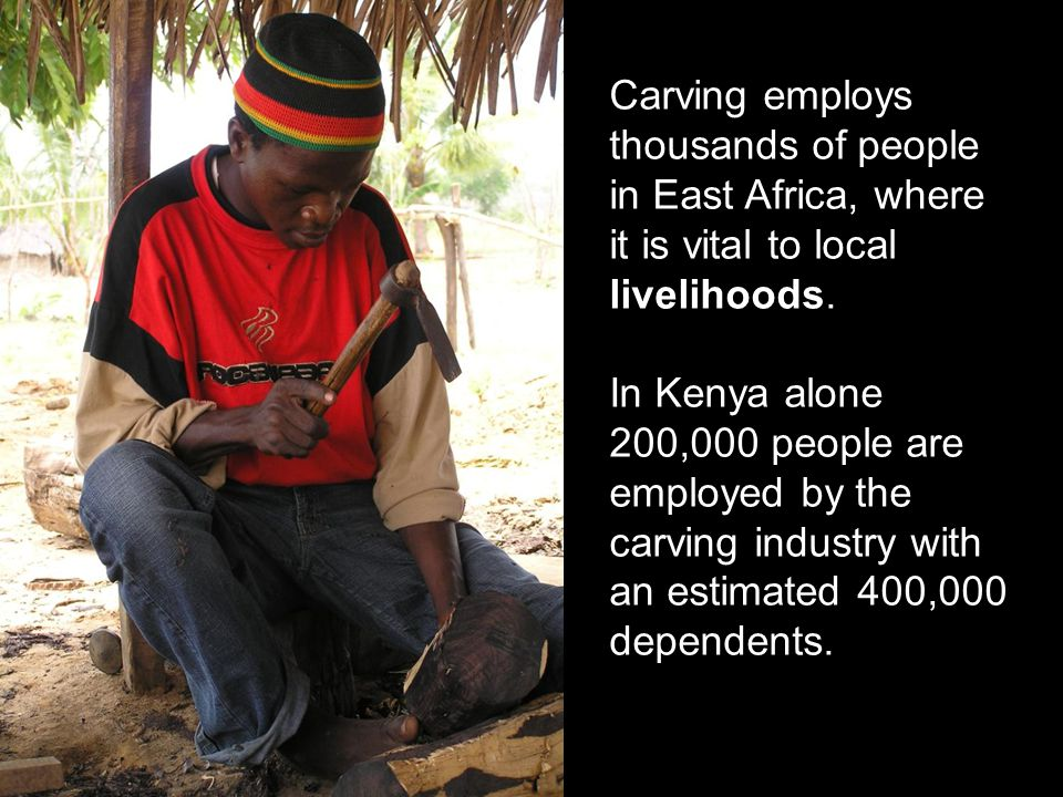Carving employs thousands of people in East Africa, where it is vital to local livelihoods. In Kenya alone 200,000 people are employed by the carving
