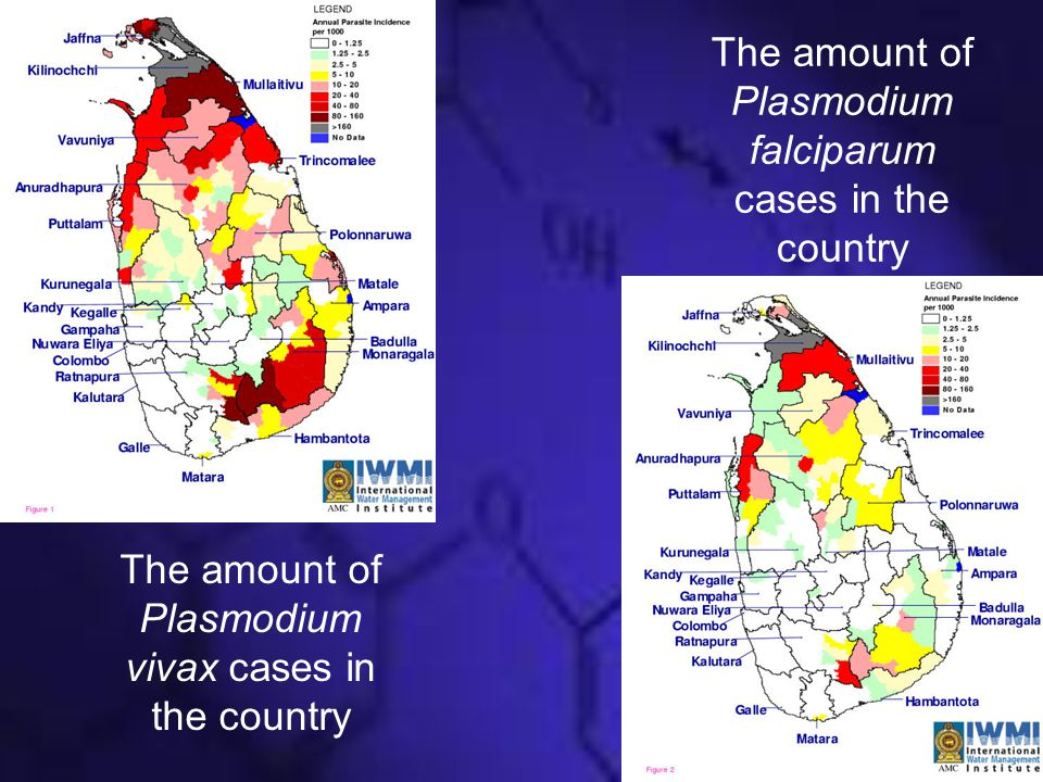 The amount of Plasmodium falciparum cases in the country The amount of Plasmodium vivax cases in the country