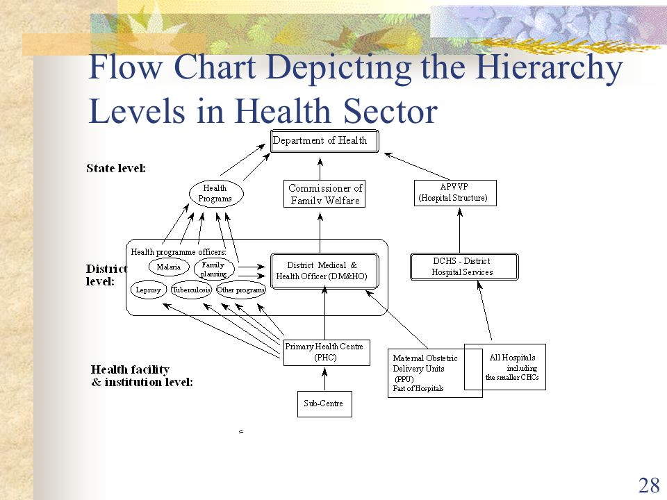 28 Flow Chart Depicting the Hierarchy Levels in Health Sector