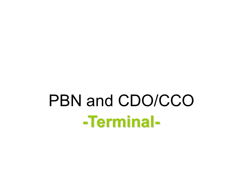 PBN and CDO/CCO -Terminal-