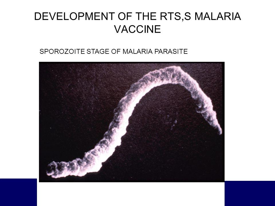 DEVELOPMENT OF THE RTS,S MALARIA VACCINE SPOROZOITE STAGE OF MALARIA PARASITE