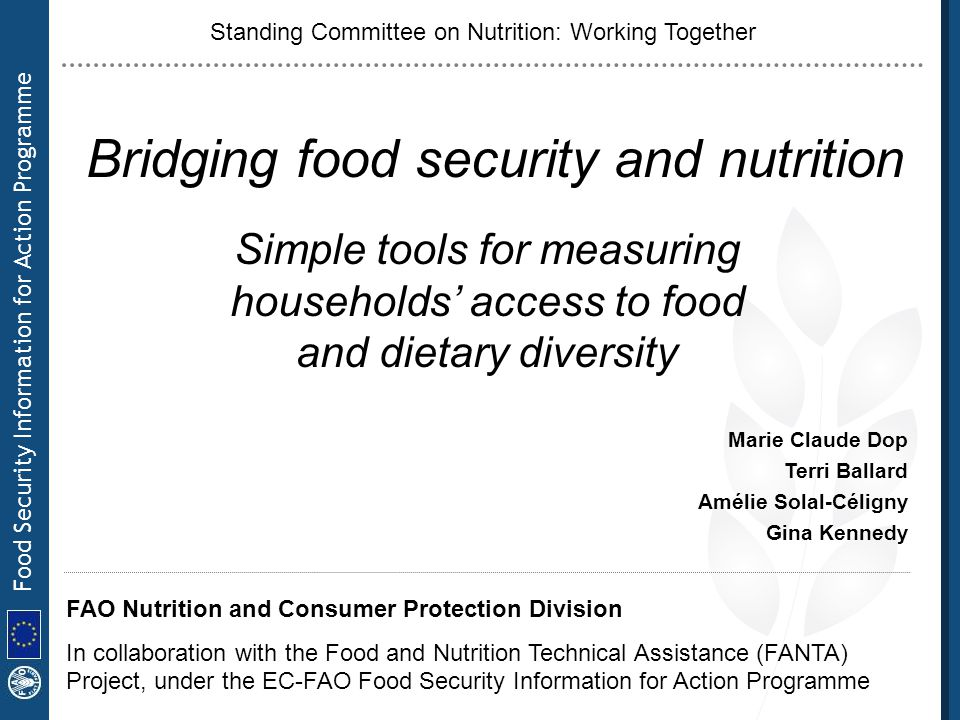 Food Security Information for Action Programme Strengths: –early indicators –specific to food –easy to administer –easy to analyze at decentralized level Limitations: –risk of biased responses due to expectation of aid –more validation needed in different contexts Further work needed: –refinement of scoring and interpretation 3- Description of the tools