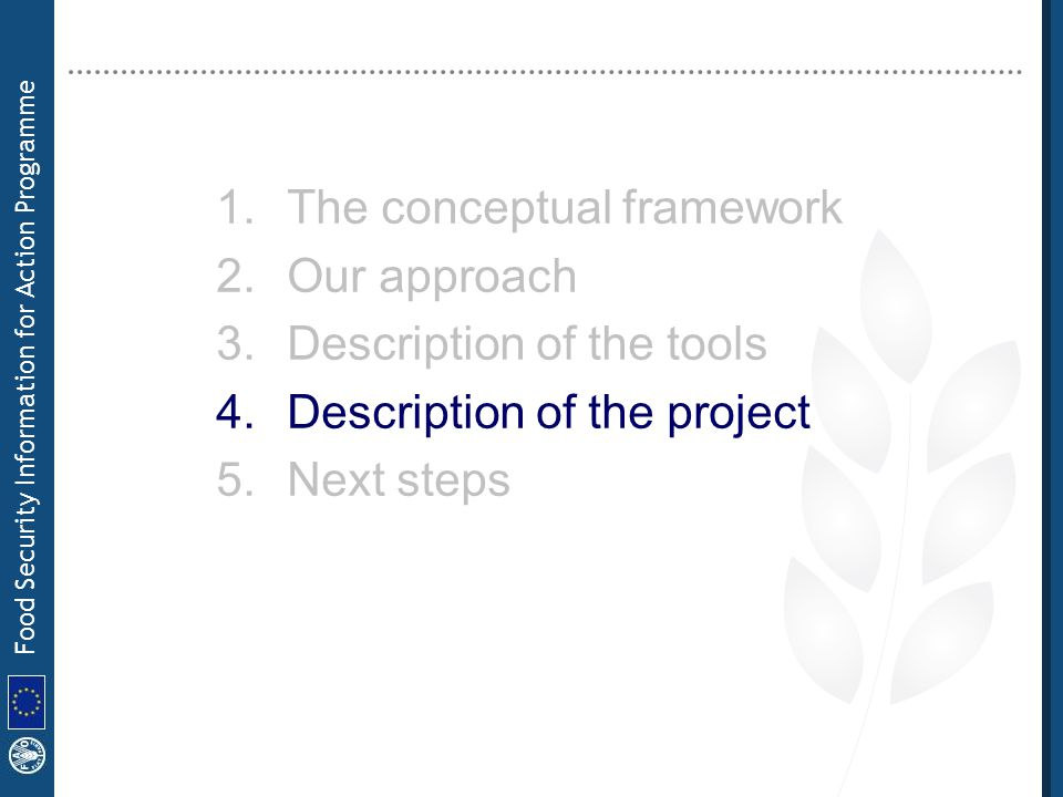 Food Security Information for Action Programme 1.The conceptual framework 2.Our approach 3.Description of the tools 4.Description of the project 5.Nex