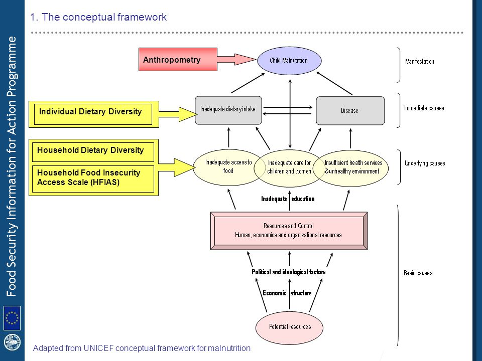 Food Security Information for Action Programme 1.The conceptual framework 2.Our approach 3.Description of the tools 4.Description of the project 5.Next steps