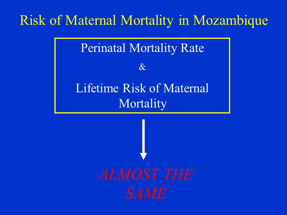Perinatal Mortality Rate & Lifetime Risk of Maternal Mortality ALMOST THE SAME Risk of Maternal Mortality in Mozambique