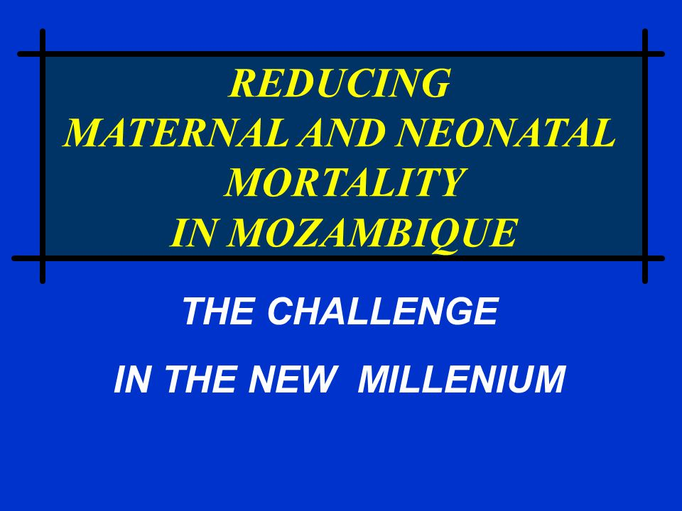 REDUCING MATERNAL AND NEONATAL MORTALITY IN MOZAMBIQUE THE CHALLENGE IN THE NEW MILLENIUM
