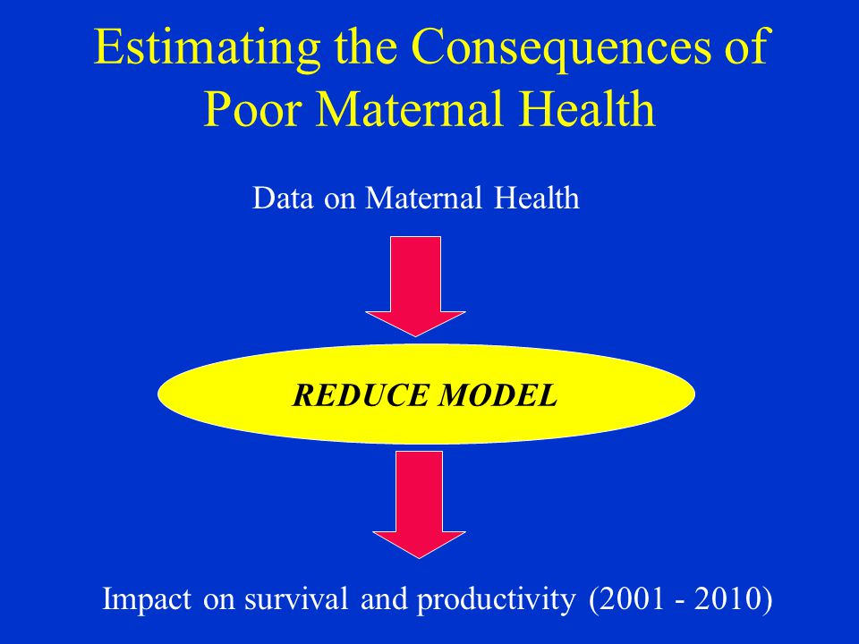 Estimating the Consequences of Poor Maternal Health REDUCE MODEL Impact on survival and productivity (2001 - 2010) Data on Maternal Health