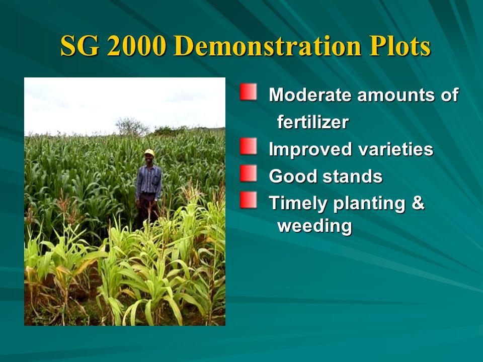 SG 2000 Demonstration Plots Moderate amounts of Moderate amounts of fertilizer fertilizer Improved varieties Improved varieties Good stands Good stands Timely planting & Timely planting & weeding weeding