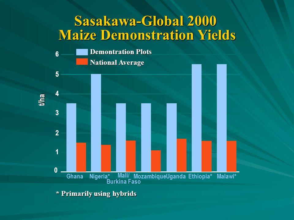 Sasakawa-Global 2000 Maize Demonstration Yields Ghana t/ha * Primarily using hybrids Nigeria* Mali/ Burkina Faso MozambiqueUgandaEthiopia*Malawi* 0 1 2 3 4 5 6 Demontration Plots National Average